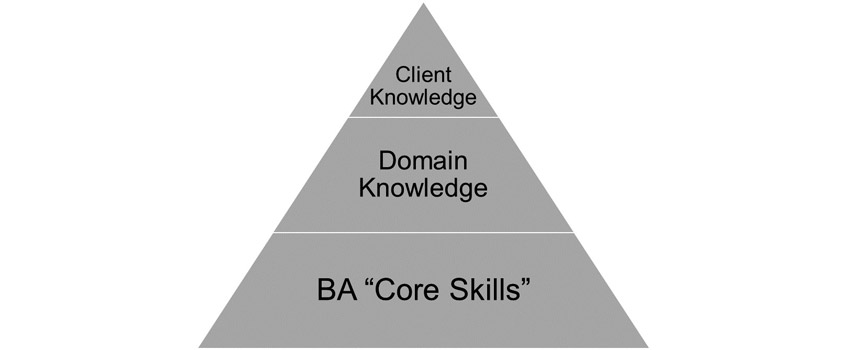 Roles of Domain Knowledge 1