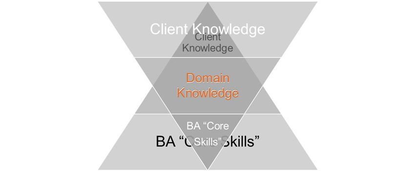 Roles of Domain Knowledge 3